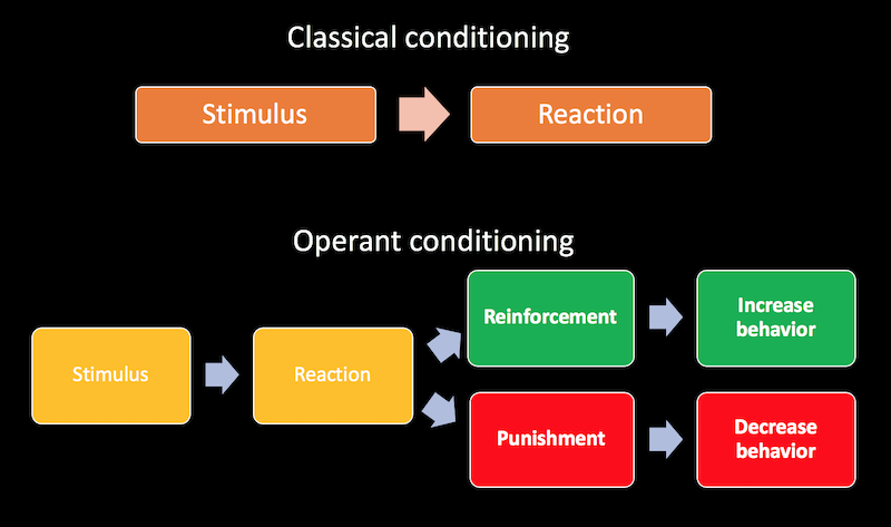 what is the work reinforcement theory